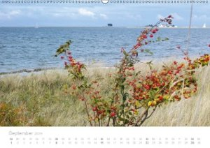 Zauberhafte Schlei (Wandkalender 2019 DIN A2 quer)