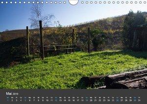 Piemont im Herbst: Wein und Trüffel (Wandkalender 2019 DIN A4 qu