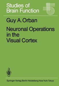 Neuronal Operations in the Visual Cortex