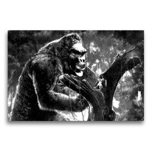 Premium Textil-Leinwand 75 cm x 50 cm quer King Kong