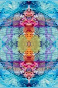 Premium Textil-Leinwand 80 cm x 120 cm hoch Quelle des Wasserfa