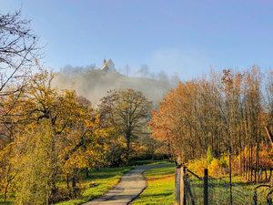 CALVENDO Puzzle Herbstfarben und mystische Stimmung beim Aufstie