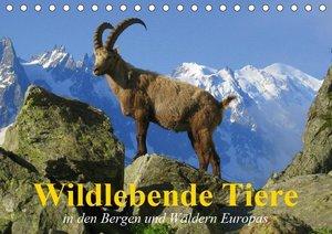 Wildlebende Tiere in den Bergen und Wäldern Europas (Tischkalend