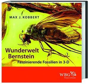 Wunderwelt Bernstein