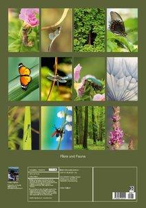Flora und Fauna (Posterbuch DIN A2 hoch)