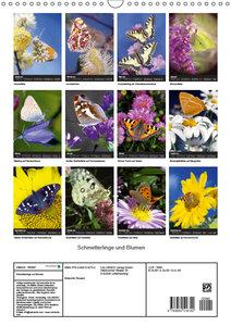 Schmetterlilnge und Blumen (Wandkalender 2019 DIN A3 hoch)