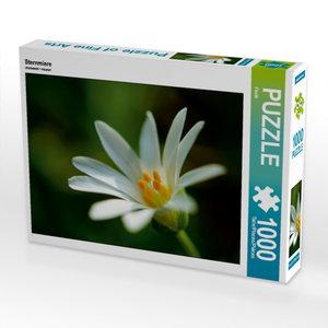 Sternmiere 1000 Teile Puzzle quer
