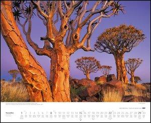 Orte der Stille 2020 - Wandkalender 52 x 42,5 cm - Spiralbindung