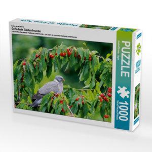 Ein Motiv aus dem Kalender Gefiederte Gartenfreunde 1000 Teile P