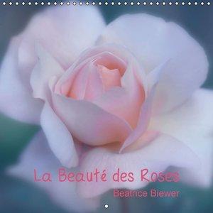 La Beauté des Roses (Calendrier mural 2015 300 × 300 mm Square)