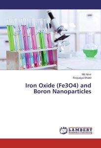 Iron Oxide (Fe3O4) and Boron Nanoparticles
