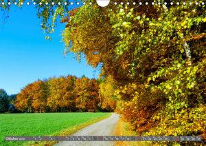 Wege finden immer ein Ziel (Wandkalender 2019 DIN A4 quer)