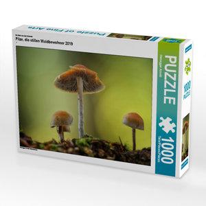 CALVENDO Puzzle Pilze, die stillen Waldbewohner 2019 1000 Teile