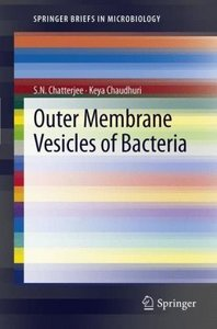 Outer Membrane Vesicles of Bacteria
