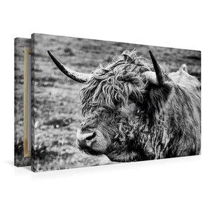 Premium Textil-Leinwand 90 cm x 60 cm quer Schottisches Hochland
