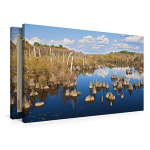 Premium Textil-Leinwand 90 cm x 60 cm quer Dead Lakes