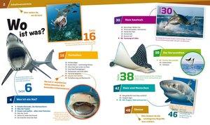 Was ist Was 95 Haie. Im Reich der schnellen Jäger