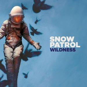 Wildness (LP)