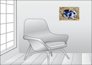 Premium Textil-Leinwand 45 cm x 30 cm quer Schwarz-weißes Kaninc
