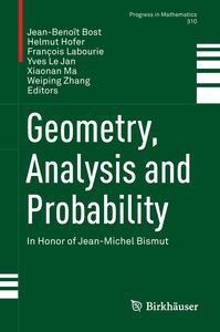 Geometry, Analysis and Probability