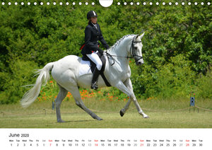 The Joy of Eventing (Wall Calendar 2020 DIN A4 Landscape)