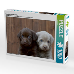 Labrador Geschwister 1000 Teile Puzzle quer