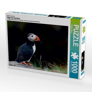 Ein Motiv aus dem Kalender Vögel des Nordens 1000 Teile Puzzle q