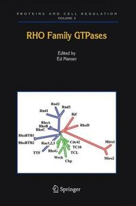 Rho Family GTPases