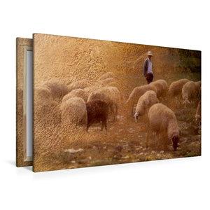 Premium Textil-Leinwand 120 cm x 80 cm quer Hirte und Herde