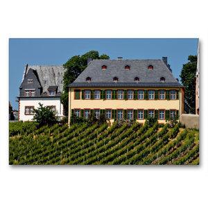 Premium Textil-Leinwand 90 cm x 60 cm quer Weingut Lauer