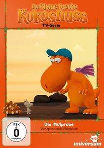 Der kleine Drache Kokosnuss - TV Serie (DVD 11)