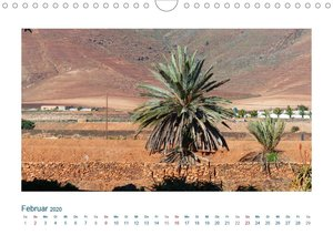 Fuerteventura. Die karge Schöne der Kanaren (Wandkalender 2020 D
