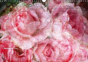 Rosen Romantik (AT-Version)