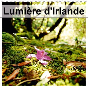 Lumiere D'irlande