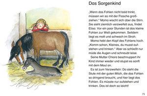 Leselöwen - Das Original - Die besten Leselöwen-Pferdegeschichte