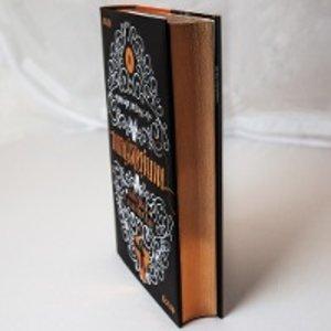 Magisterium 01 - Der Weg ins Labyrinth