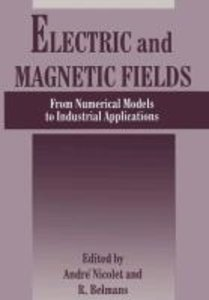 Electric and Magnetic Fields