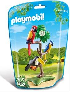 Papageien und Tukan im Baum