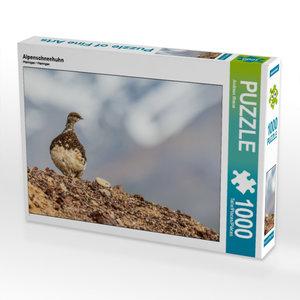 Alpenschneehuhn 1000 Teile Puzzle quer