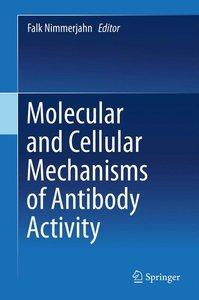 Molecular and Cellular Mechanisms of Antibody Activity