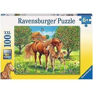 Pferdeglück auf Wiese Puzzle 100 Teile