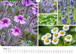 Ein Garten, der zum Verweilen einlädt (Wandkalender 2019 DIN A4