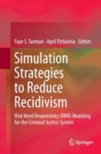 Simulation Strategies to Reduce Recidivism