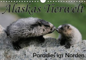 Alaskas Tierwelt - Paradies im Norden