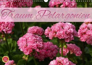 Traum Pelargonien (Wandkalender 2016 DIN A3 quer)