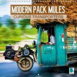 Modern pack mules: Curious transporters (Wall Calendar 2015 300