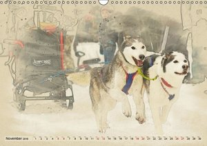Sledgedogs 2016 / UK-Version (Wall Calendar 2016 DIN A3 Landscap
