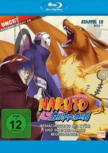 Naruto Shippuden - Staffel 12, Box 1: Folge 463-480