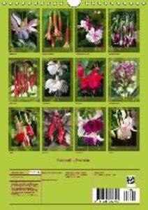 Fascinating Fuchsias (Wall Calendar 2015 DIN A4 Portrait)