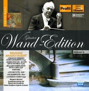 Wand Edition Vol.11